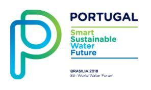 Portuguese Water Hub